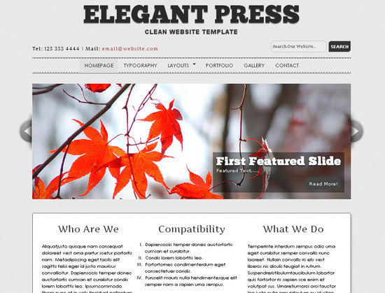 Elegant Press: Free Website Template