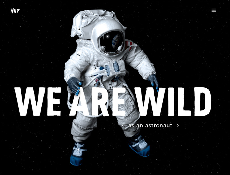 WILD in 33 New Websites with Clean and Minimalist Design
