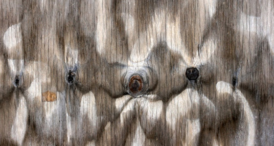 - Wood Texture