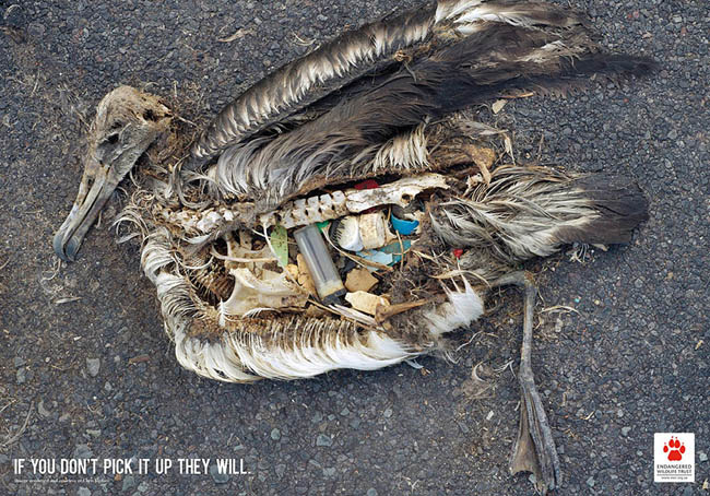 Social Issue Ads - If You Don't Pick It Up They Will