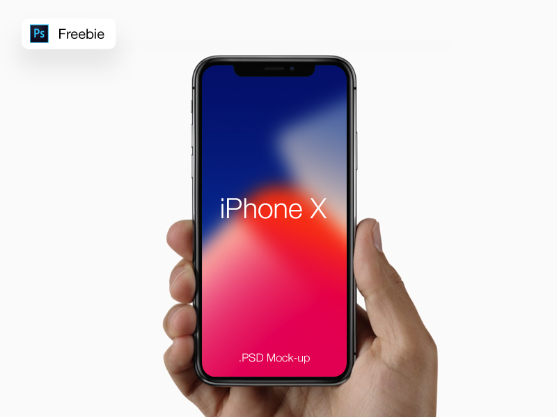 iPhoneX in Hand