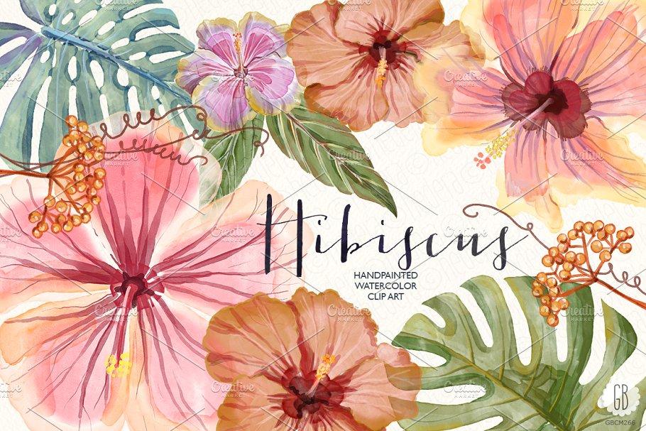 <span class='yzk_title_61452'>水彩木槿花素材 Watercolor hibiscus flower monstera</span>